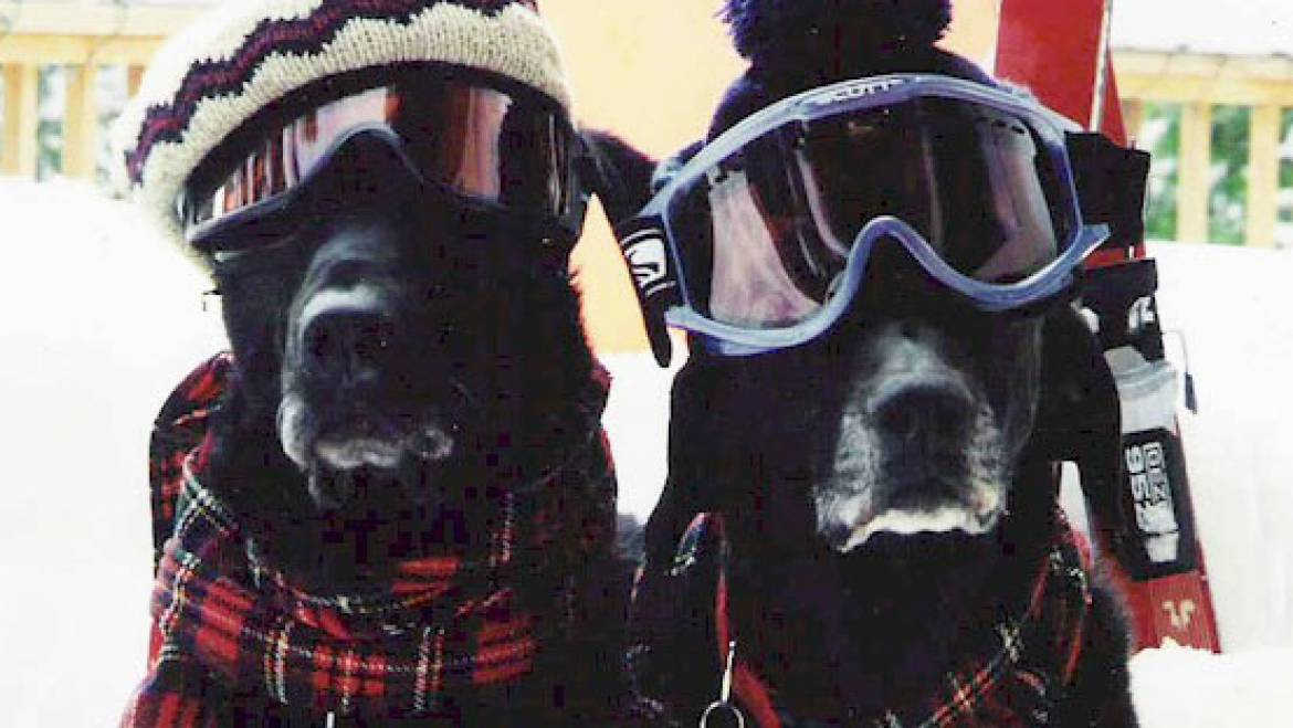 Ways To Stay Warm During A Cold Season On The Mountain