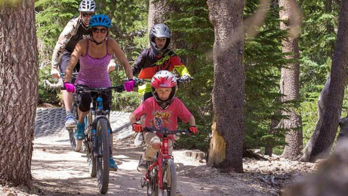 bike trails in Mammoth