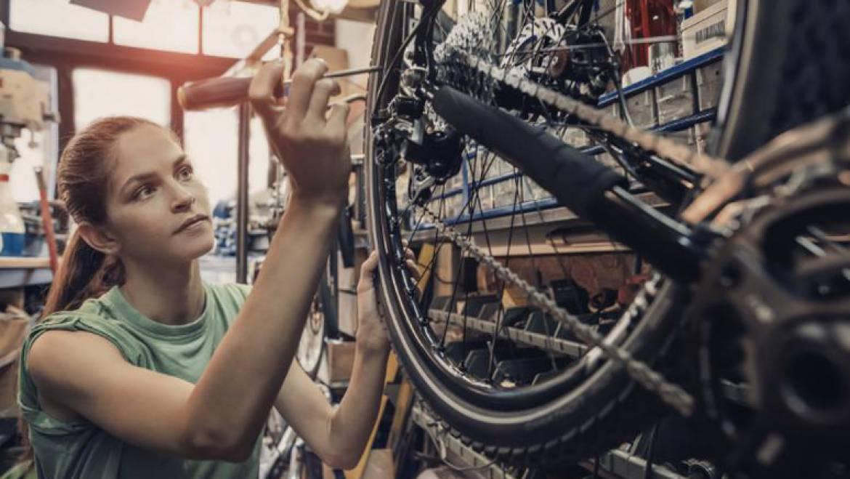 build a bike mammoth