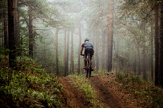 Amazing Mammoth Trails for Mountain Biking in Mammoth Lakes, CA