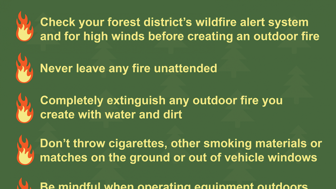 Preventing wildfires mammoth