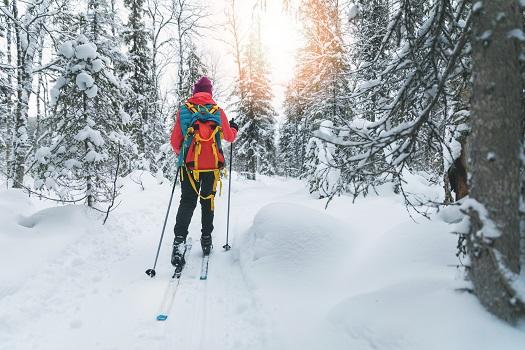 ski rentals mammoth Skiing