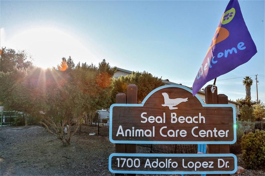 SBACC Seal Beach Animal Care Center