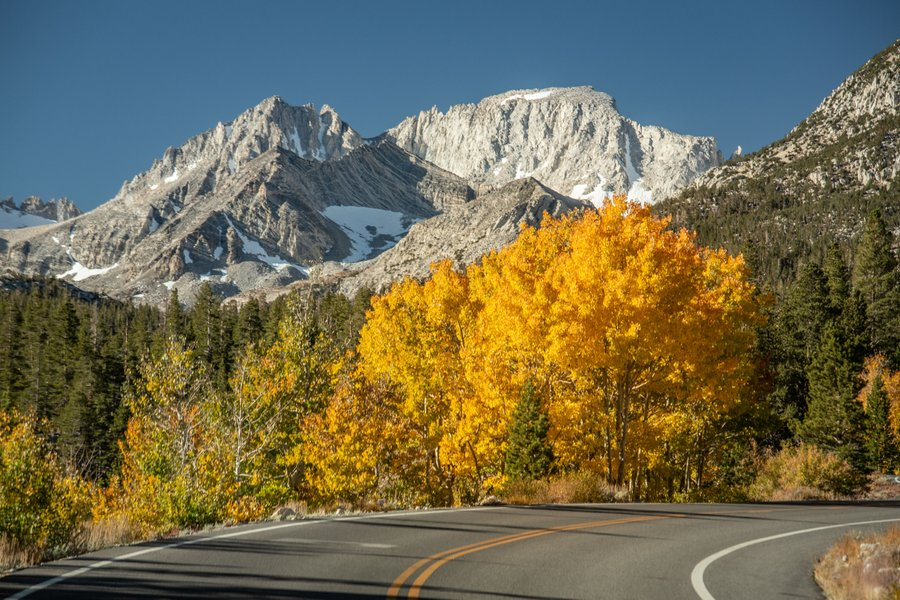 Mammoth Fall Colors