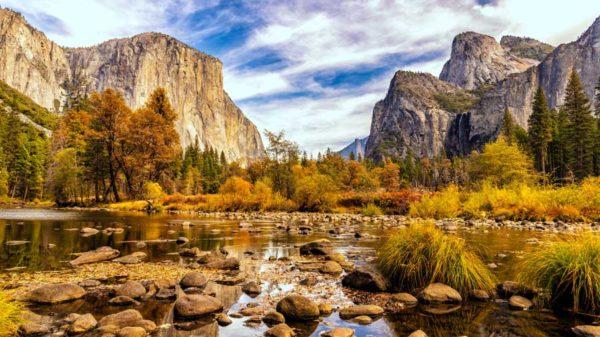 Yosemite and covid-19