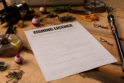 Where Can I Buy a Fishing License in Mammoth Lakes in Mammoth Lakes, CA